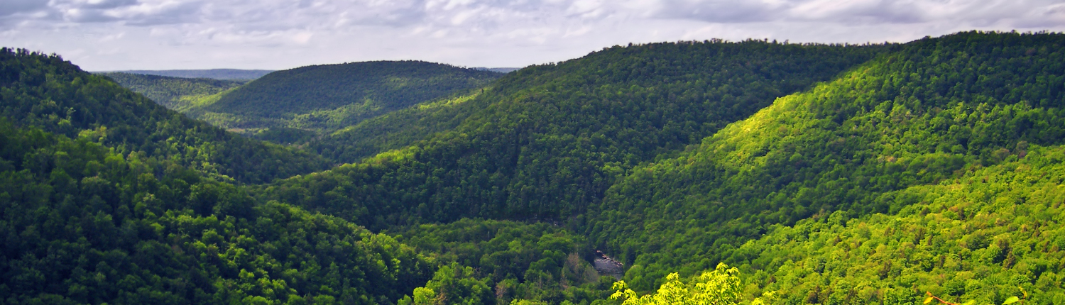 Appalachian Drilling Services: Worlds End State Park